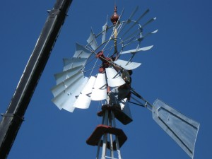 Large Windmills - 12'