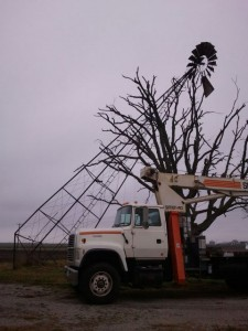 Windmill That Fell Into Tree
